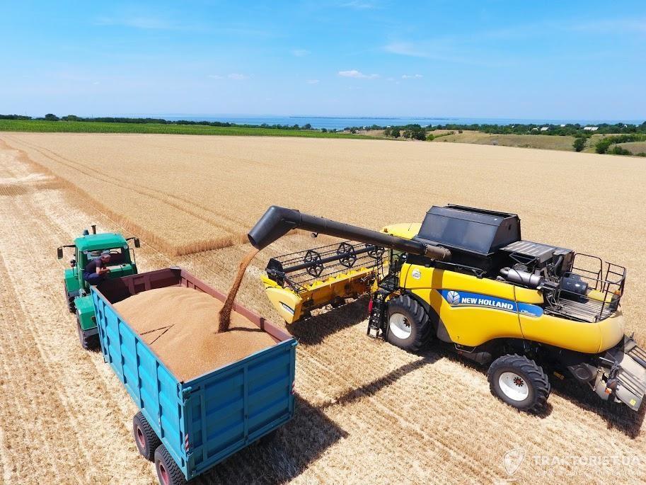 Збирання пшениці у Запорізькій області