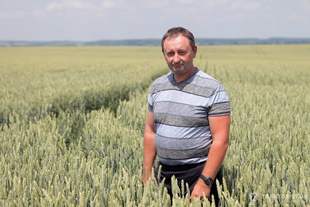 Микола Шандрук, головний агроном АФ «Горинь»
