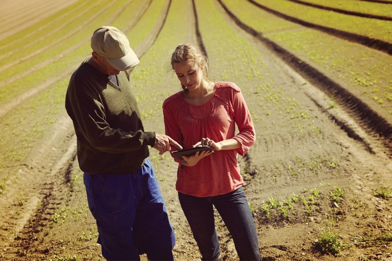 Yara и IBM создадут платформу цифрового сельского хозяйства